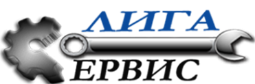 Логотип компании Лига Сервис